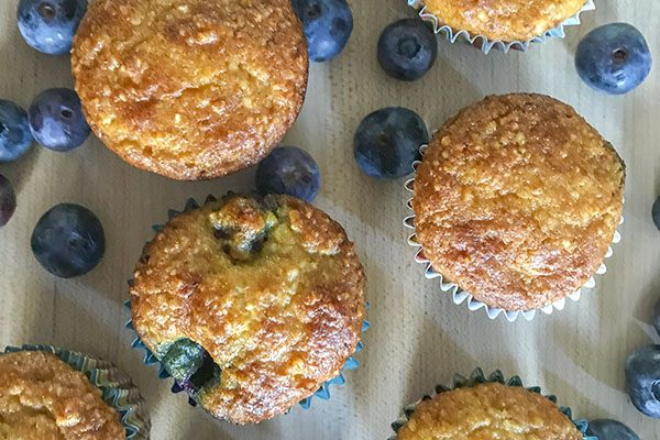 Blueberry Almond Flour Muffins (GF)