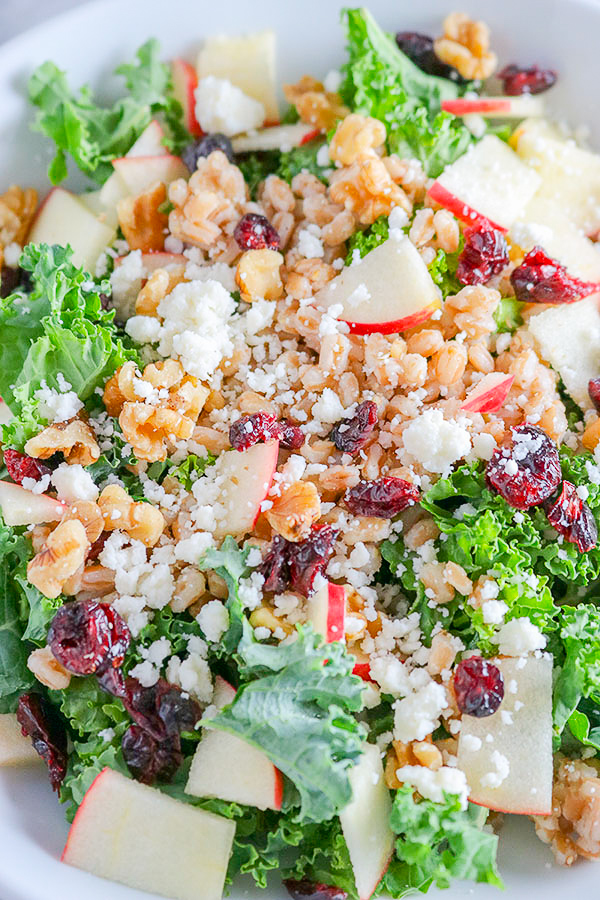 Rich, nutrient-dense kale, chewy farro, sweet dried cranberries, juicy apple, and crunchy toasted walnuts - all coated with a bright, citrus lemon vinaigrette | NOMaste Kitchen